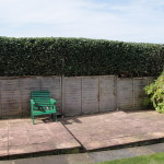 AFTER - Beech Hedge - Aug 2012