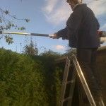 Getting The Hedge Even