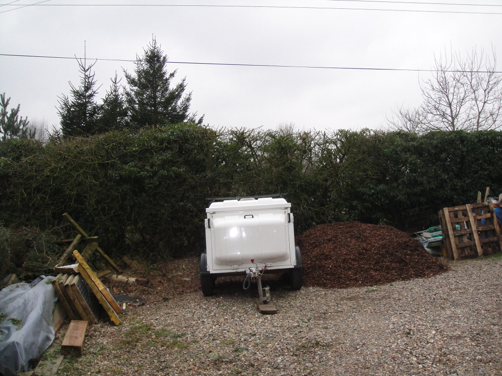 AFTER - Part of Large Hedge with Mixed Trees - March 2013