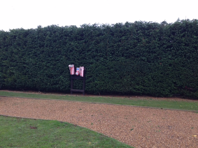 3. Height Reduction & Trim Completed On This Large Leylandii Hedge.