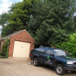 BEFORE - Large Holly & Leylandii From Garage Side - June '13