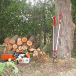 Small Log Pile