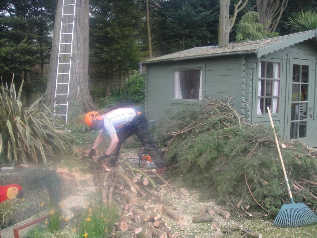 Jamie sorting the wood & brash