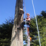 Jamie getting rigging ropes into position to make final cuts