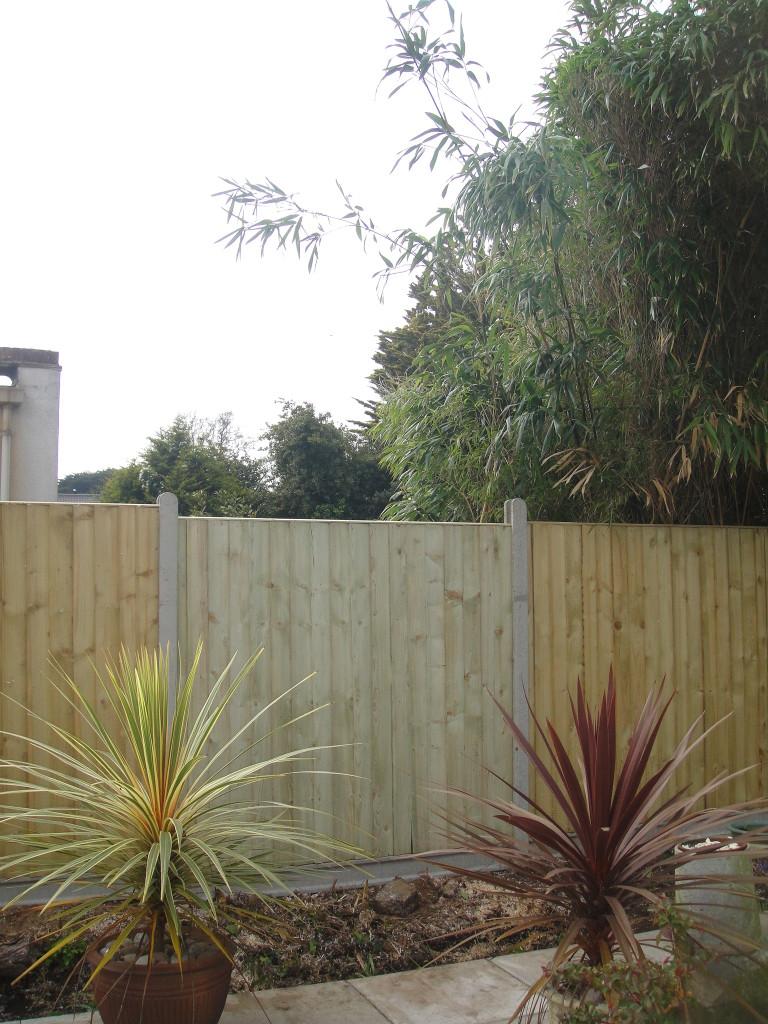 4.AFTER - Leylandii dismantled & fence panel slotted in - Apr '14