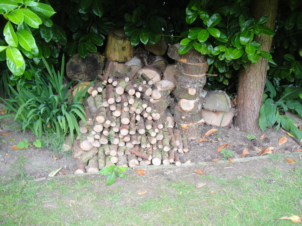 Wood Cut & Stacked Neatly For The Customer
