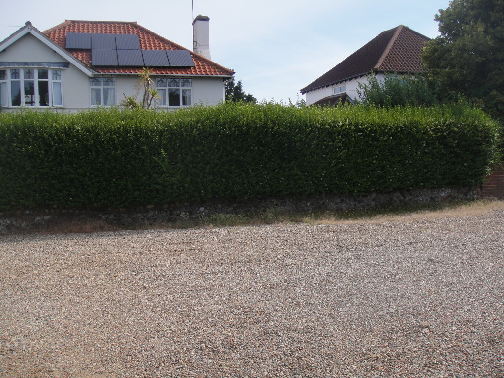 BEFORE - Privet Hedge In Need Of A Good Trim - July '14