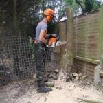 Jamie Cutting Lower Trunk