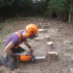 Jamie making final cut on Leylandii stump