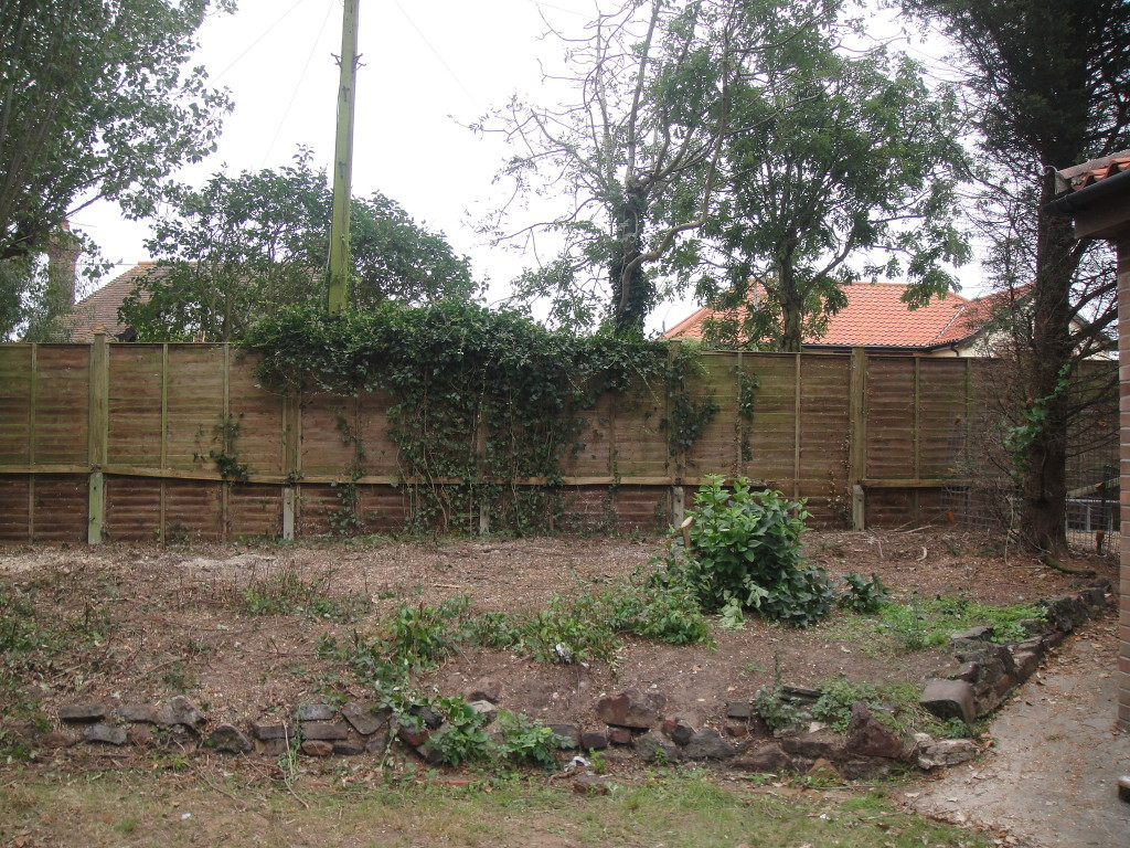 4.AFTER - All Leylandii Trees Dismantled To Ground Level - Sept '14