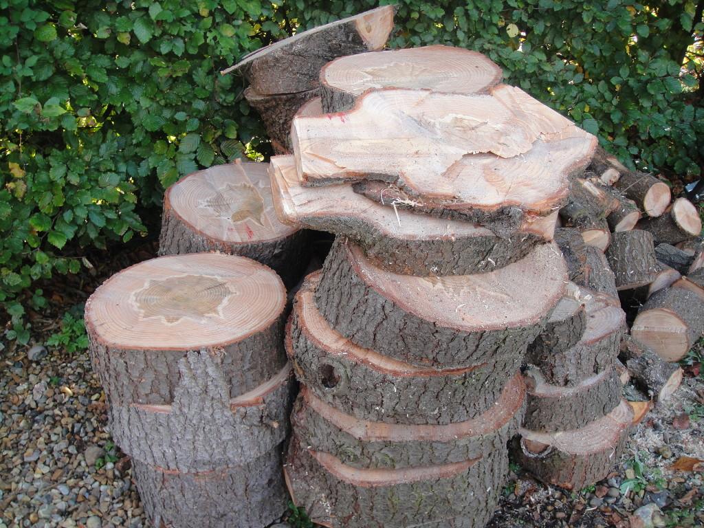 Large Wood Pile