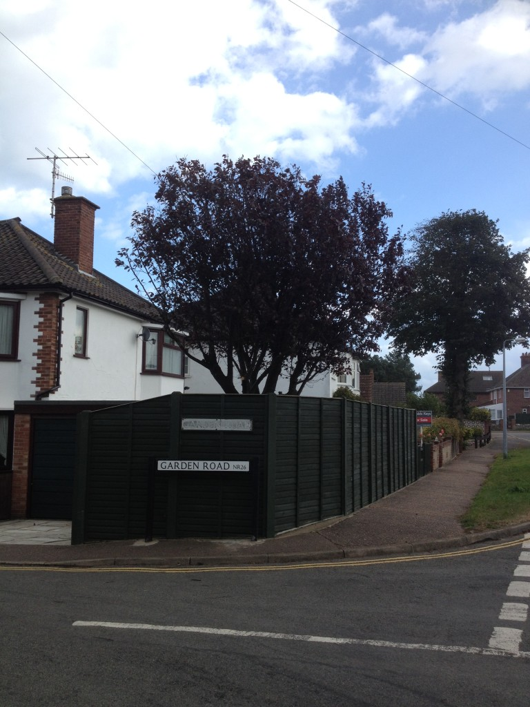 AFTER - Prunus Tree Now Reduced & Lifted By 30%  - Oct '14