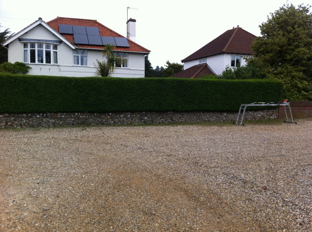 Finished Privet Hedge - June 13