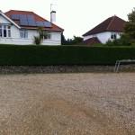 Finished Privet Hedge - June 13