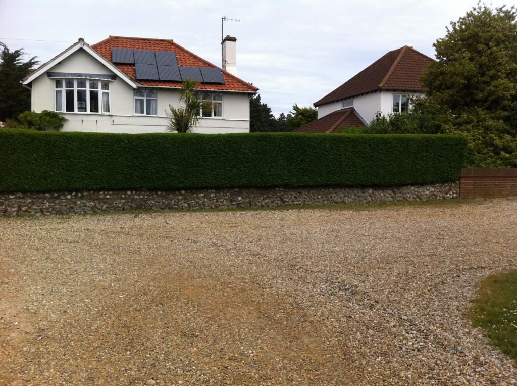 Finished Privet Hedge (2) - June 13
