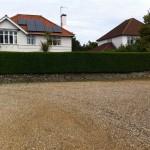 Finished Privet Hedge (2) - June 13