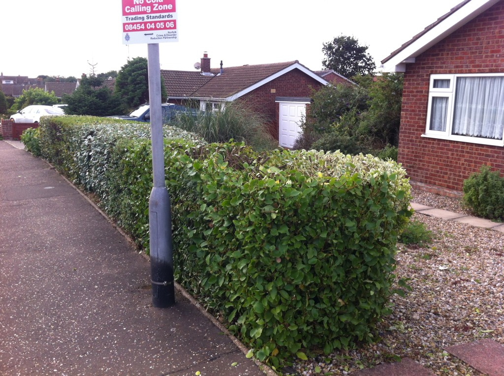 AFTER - Mixed Variety Hedge Cut & Trimmed To An Even Height - Sept '13