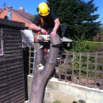 Taking Log Size Bits Off