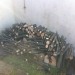 Logs Stacked From Sycamore