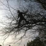 Jamie Branch Walking