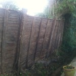AFTER - Fence now showing, Ivy Hedge removed - Feb '14