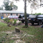 Our vans + Birch stump!