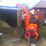 Chippering the Leylandii hedge