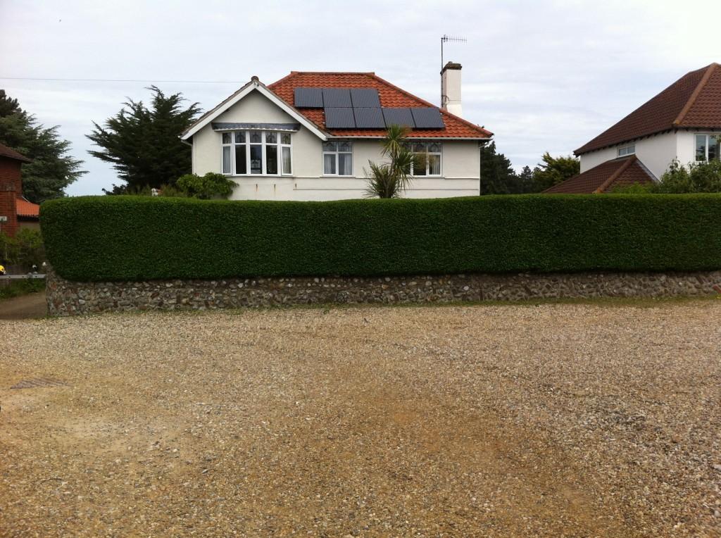 Finished Privet Hedge (3) - June `13